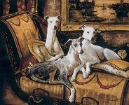 The Whippets Are Resting�Do Not Disturb!!!